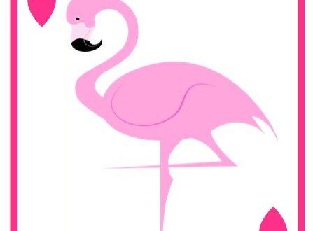 Biglietti ed etichette a tema Fenicottero Rosa !
